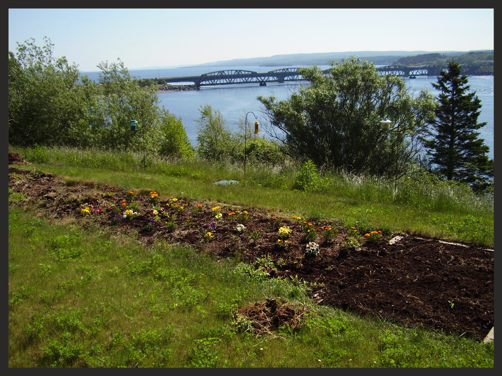 Peat system in Iona